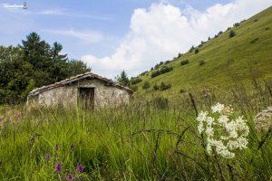 Colle San Fermo: prati e pascoli